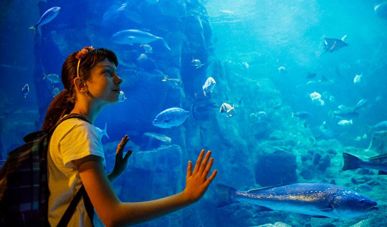 Monterey Bay Aquarium at California