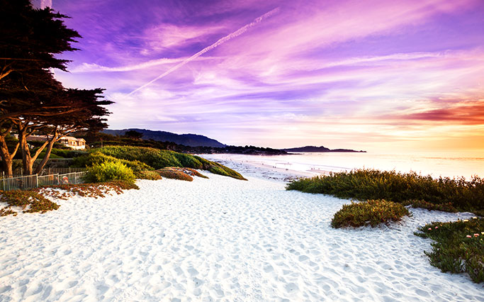 Close to Beach and Outdoor Recreation in Monterey Hotel